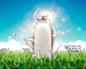 milk silk